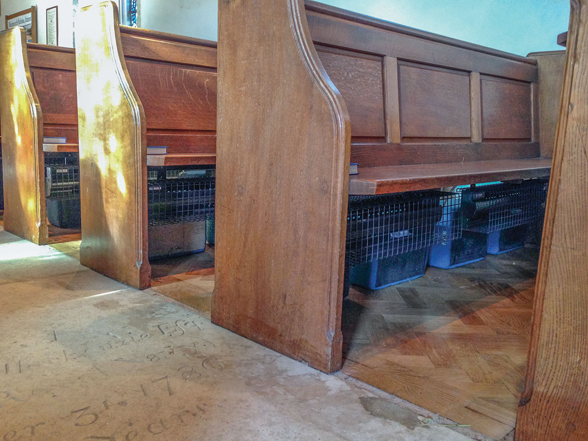 Pew heaters with suspension brackets and guards