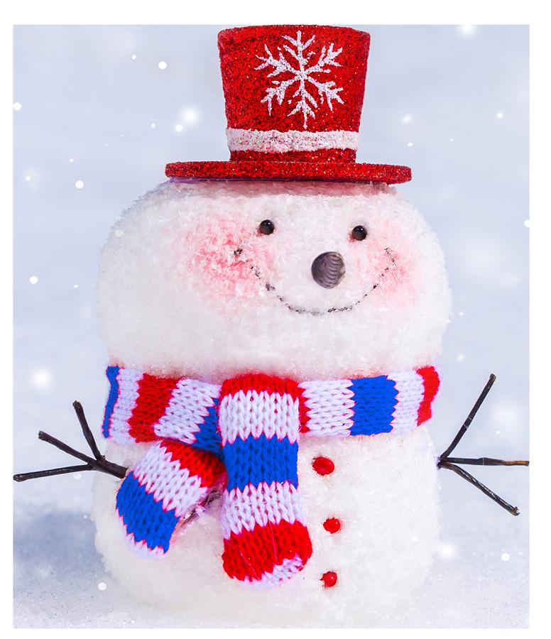 Snowman 2020 02 web